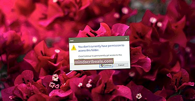 Oprava: Chyba přístupu Office 2016 k udělení přístupu v systému MacOS