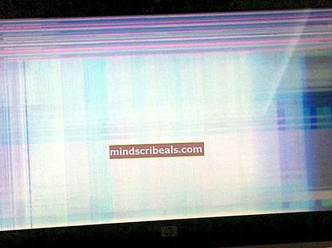 ŘEŠENÍ: Problémy s černou obrazovkou Firefoxu